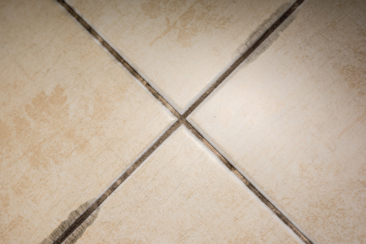 7 Ways to Prevent Mold Growth on Your Houston Grout and Tile
